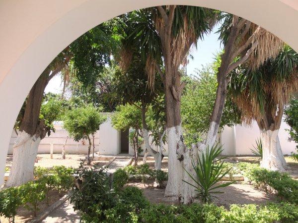 Ontwerp private tuin
